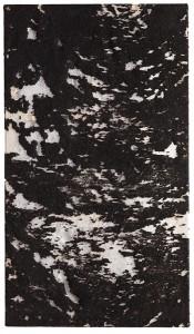 p0120 - Luc Vanderveldel