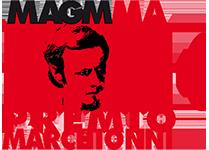 Premio Internazionale
