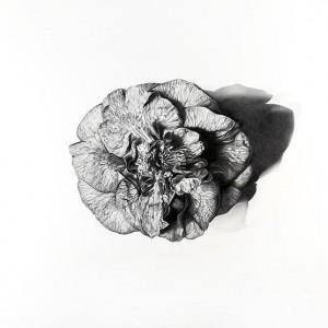 172g17-Laura Ghilarducci