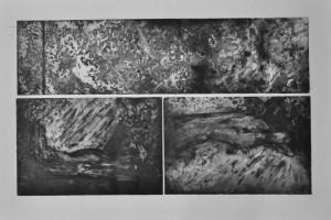 234p17 - Liana Darwish