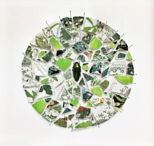 Pitt0010-Alice-padovani-fracture Green - 2018 - Assemblaggio In Teca Entomologica-frammenti Di Ceramiche, Spilli E Un Coleottero - 35x35x5 Cm-0010