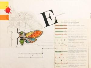 og065-marco moschetti Entomometrie mista su carta 23x30