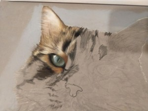 0112 Tiziana Trusiani - Fujiama-pastello-misura-35x40
