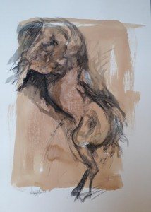 0116 Walter Marin - Studio per cavallo tecnica  mista su carta 70x100